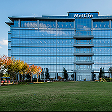 Metlife Global